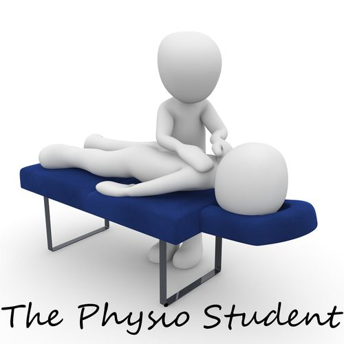 The Physio Student