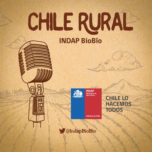 CHILE RURAL - INDAP BioBío